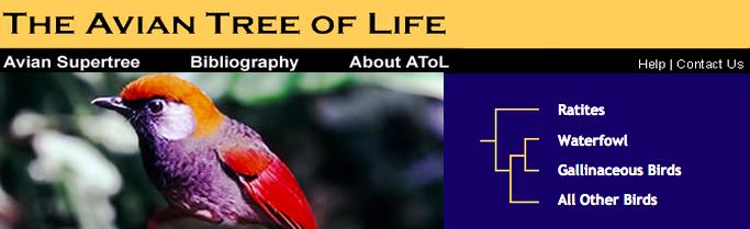 atol-top-navigation